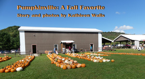 Pumpkins in front of a barn